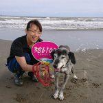 秋風吹くふく海さんぽ…砂浜をお散歩するワンちゃん達のお耳もパタパタおどります。(中型犬・大型犬)その2編