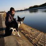 入園ほやほやのミカちゃんもすこ~し先輩のエスくんも~作田川の川さんぽに行ってらっしゃ~い!(中型犬・大型犬)その1編