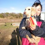 千葉の老犬ホームの九十九里パークのホットなワンちゃん達(HOT DOG)いらっしゃ~い!(小型犬)その4編