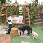 千葉の老犬ホーム九十九里パークに…心のこもったご寄付をいただきました。編