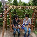 千葉の老犬ホーム九十九里パークに…神奈川から柴犬の男の子のベイくん(15さい)が入園しました。編
