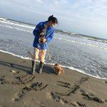 老犬ホーム九十九里パークこうれいの…九十九里海岸の海さんぽにいってきま~す!(小型犬)その4編