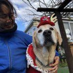 九十九里パークから~ワンちゃん達のハッピーメリークリスマス!(中型犬・大型犬)その3編