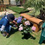 老犬ホーム九十九里パークに…東京からポメラニアンの男の子の「小五郎くん」(11さい)が入園しました。編