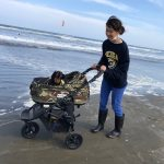 令和元年もみんなで一緒に~九十九里海岸の海さんぽへ行ってらっしゃ~い!(小型犬・中型犬)その2編