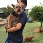 8月の海風ふくよ公園で…みんなで涼しく夏遊び。(小型犬・中型犬)その2編