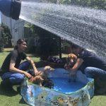 8月の海風ふくよ公園で…みんなで涼しく夏遊び。(小型犬・中型犬)その4編