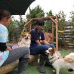 季節はもう秋ですね九十九里パーク秋コレクションはじまめま~す!(小型犬・中型犬)その8編