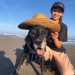 老犬ホーム九十九里パークに…千葉からラブラドール・レトリーバーの男の子「ココアくん」(16歳)が入園しました。編