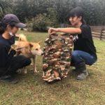 季節はもう秋ですね九十九里パーク秋コレクションはじまめま~す!(中型犬・大型犬)その4編