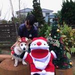 九十九里パークから~11月のワンワンMerry Christmas♪(中型犬・大型犬)その2編