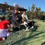 九十九里パークから~11月のワンワンMerry Christmas♪(小型犬・中型犬)その6編