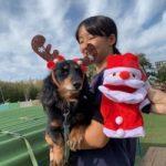 九十九里パークから~11月のワンワンMerry Christmas♪(小型犬・中型犬)その4編