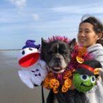 10月は~秋の海さんぽでHAPPYハロウィ~ン!(中型犬・大型犬)その1編