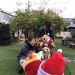 九十九里パークのワンちゃん達の12月(小型犬・中型犬)その1編