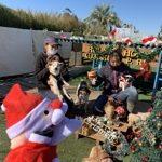 九十九里パークから~11月のワンワンMerry Christmas♪(中型犬・大型犬)その3編