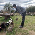 今年は暖冬うれしいね~ドックランのワンちゃん達♪(小型・中型・大型犬)その6編
